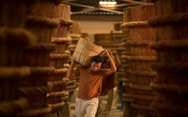 Đến nhà thùng Phú Quốc khám phá làng nghề nước mắm truyền thống