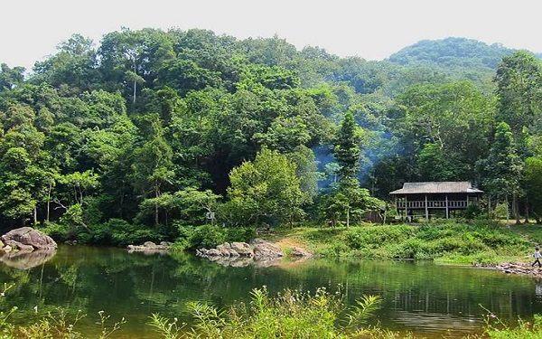 Rừng nguyên sinh Khe Rỗ: Điểm hẹn đẹp của núi rừng kỳ thú