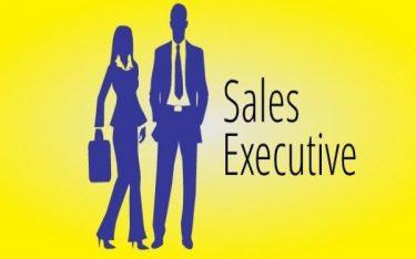 Sales executive là gì? Khám phá công việc của Sales excecutive