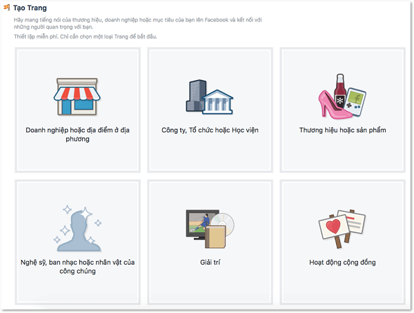 Có tổng cộng 6 kiểu trang khi tạo page trên Facebook
