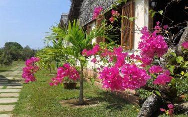 10 Homestay Phú Quốc gần biển thơ mộng giá lại rẻ vô cùng