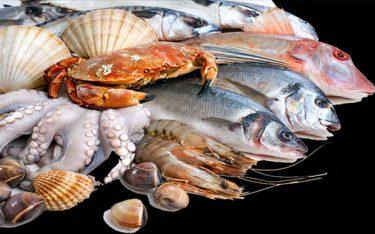 Những hình thức kinh doanh hải sản giúp thu hồi vốn cực nhanh