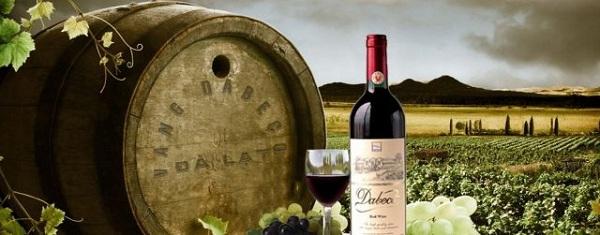 Vang Đà Lạt - Thứ rượu đặc sản vươn tầm quốc tế
