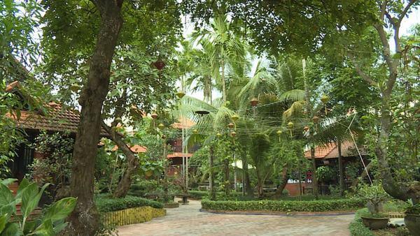 Các loại cây ăn quả và cây cảnh trong vườn của homestay