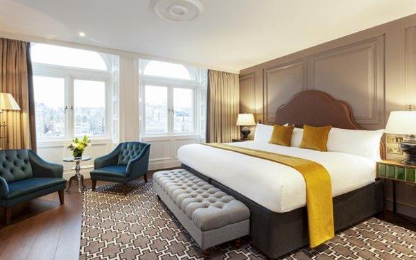 Loại giường cỡ lớn cao cấp thưởng chỉ được bố trí tại phòng Deluxe và Suite