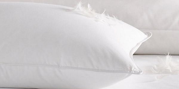 Chăn lông vũ là loại chăn cao cấp được làm từ lông vũ của các loài gia cầm