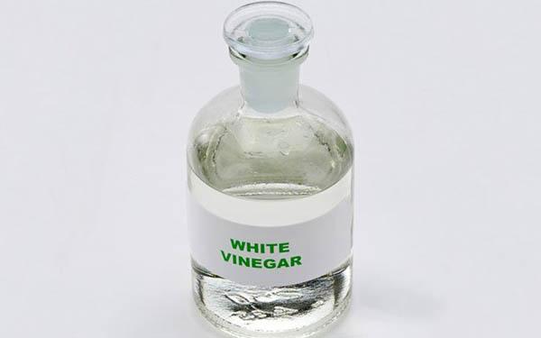Giấm trắng là dung dịch vệ sinh tủ lạnh mini hiệu quả