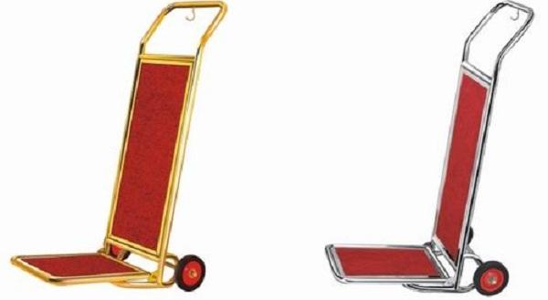 Mẫu xe đẩy 2 bánh này mới xuất hiện vào thời gian gần đây với kiểu dáng cực kỳ mới lạ và đẹp mắt