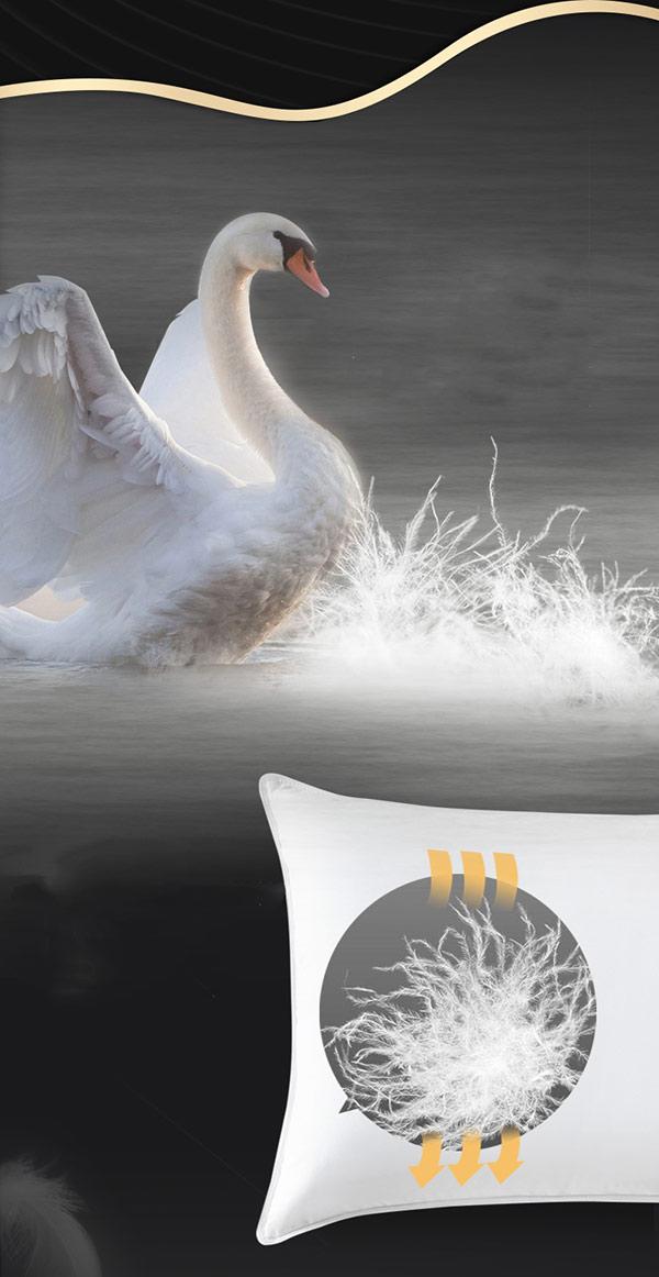 Gối lông vũ sản xuất từ nguyên liệu lông vũ (lông ngỗng)