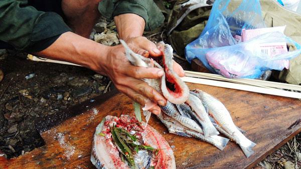 Ướp gia vị lên thịt cá