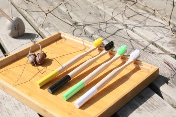 Thiết kế bàn chải đánh răng gỗ đa dạng, tay cầm dạng tròn hoặc dẹt