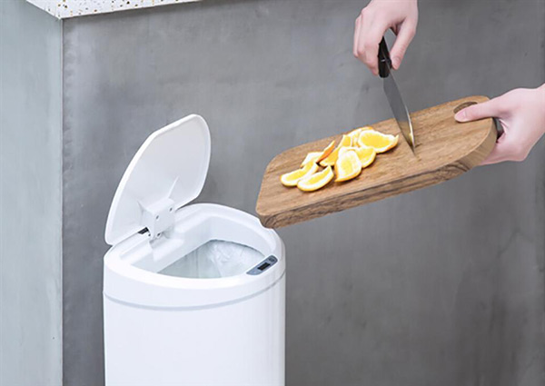 Với rác thải vị ngọt thùng rác vẫn rất thu hút côn trùng