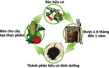 Thùng rác hữu cơ có những công dụng nào?